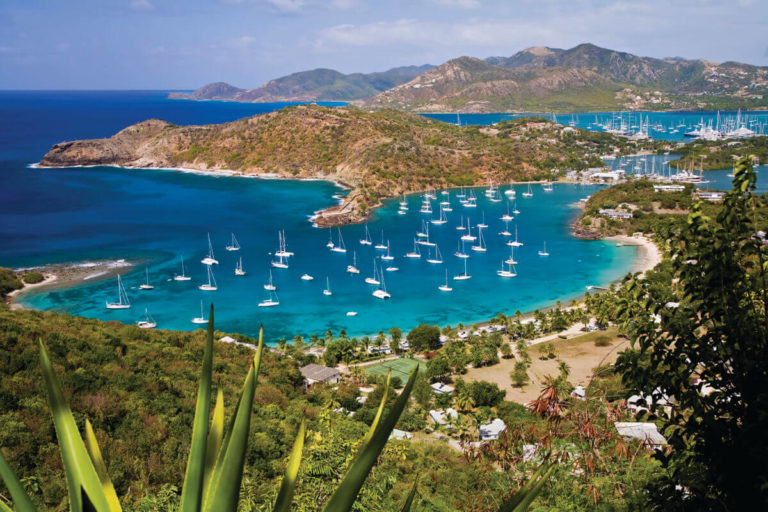 Antigua and Barbuda Citizenship by Investment - Savory and Partners1