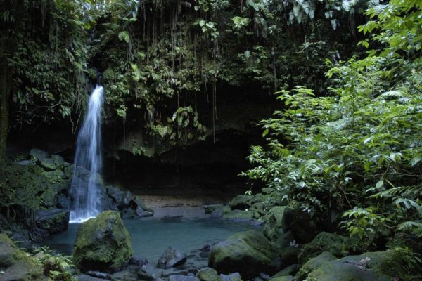 Commowealth of Dominica Citizenship by Investment - Savory and Partners