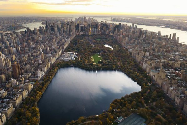 Central Park in New York - USA Immigration Program - Savory & Partners - Dubai, UAE