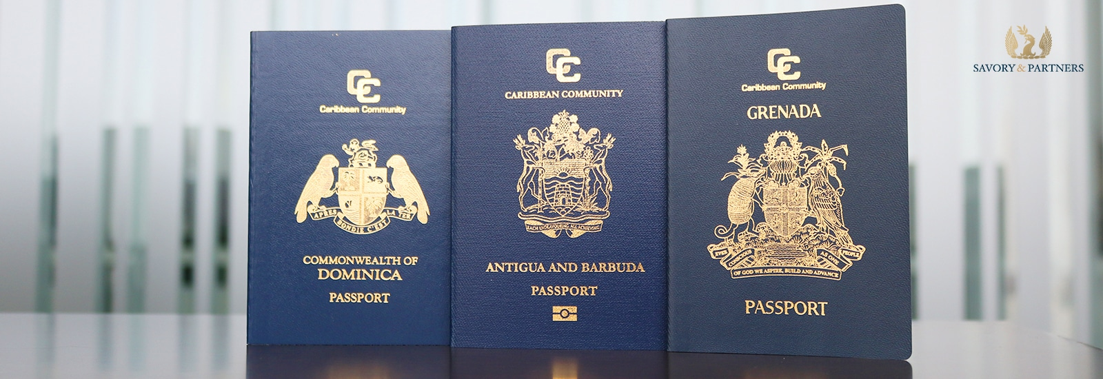 A second passport is the perfect solution for political and economic instability