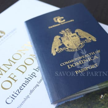 Why Should High-Net-Worth Individuals Apply for Commonwealth of Dominica Citizenship by Investment?