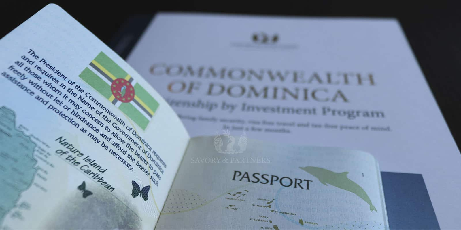 Dominica Citizenship by Investment Program - Savory & Partners