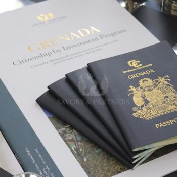 Second Citizenship & US Visas: How to Obtain an E-2 Investor Visa Through Grenada Citizenship by Investment